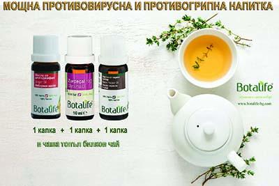 зелен чай мощна противовирусна напитка